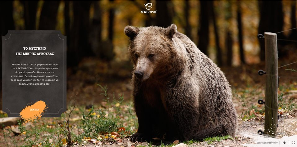 """Οδηγός εκπαιδευτικού για το πρόγραμμα """"Το μυστήριο της μικρής αρκούδας"""""""