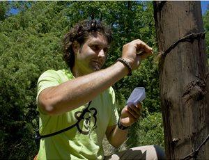 Ο ΑΡΚΤΟΥΡΟΣ δημοσίευσε την πρώτη ολοκληρωμένη  γενετική μελέτη της καφέ αρκούδας στην Ελλάδα thumb