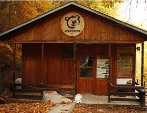 Ο ΑΡΚΤΟΥΡΟΣ δημιουργεί το Βαλκανικό Κέντρο Άγριων Σαρκοφάγων με την υποστήριξη του Ιδρύματος Σταύρος Νιάρχος thumb