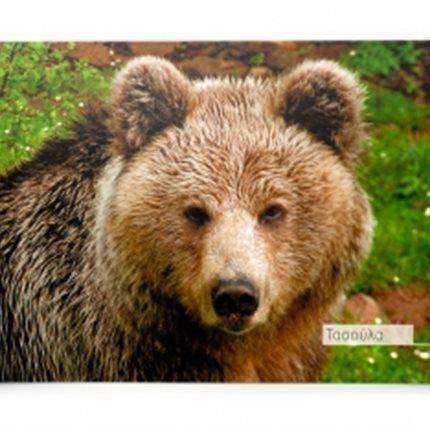 Κάρτα Αρκτούρος