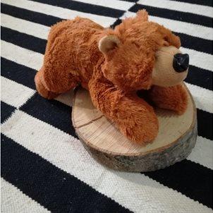 Image of product Λούτρινο αρκουδάκι ο ''COOPER''