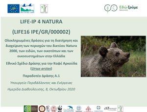 Κοινό Δελτίο Τύπου: Μεγάλο ενδιαφέρον για το Εθνικό Σχέδιο Δράσης για την Καφέ Αρκούδα thumb