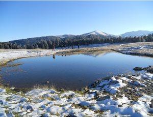 Καταγγελία στην Ευρωπαϊκή Επιτροπή για τον νέο νόμο  που απειλεί τις περιοχές Natura 2000 thumb