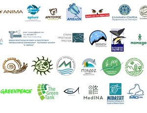 We unite our voices for the protection of the natural environment thumb