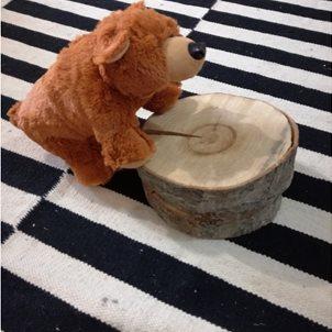 Image of product Λούτρινο αρκουδάκι ο ''BRADLEY''