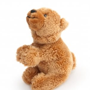 Image of product Bear Magnet
