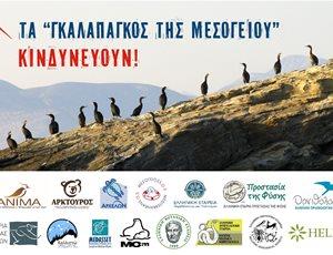 Οι νησίδες του Ν. Αιγαίου - Τα «γκαλαπάγκος της Μεσογείου»- απειλούνται με καταστροφή thumb